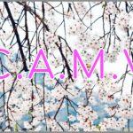 Coaching Model: C.A.M.V
