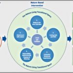 Coaching Model: Nature-Based Leadership (NLC)