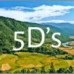 Coaching Model: 5D's