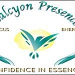 Coaching Model: Halcyon Presence