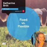 Power Tool: Fixed vs. Flexible