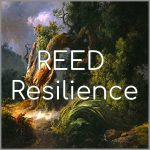 Coaching Model: REED Resilience