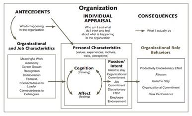 Barbara Busi Research Paper