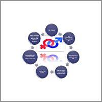 Transformational Coaching Model Paola Knecht