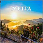 Coaching Model: METTA