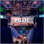 Coaching Model: PILOT