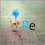 Coaching Model: Re