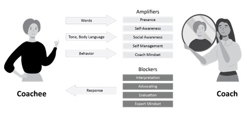 Business Coaching Model Damon Poole