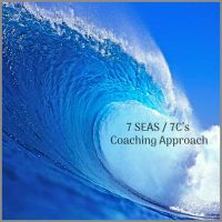Transformational Coaching Model Sabine Schoellhorn
