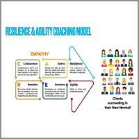 Business Coaching Model Daniel Chng