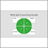 Executive Coaching Model Ashley Robertson