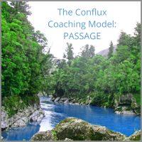 Business Coaching Model Wendy Leggett
