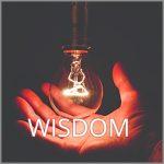Coaching Model: WISDOM