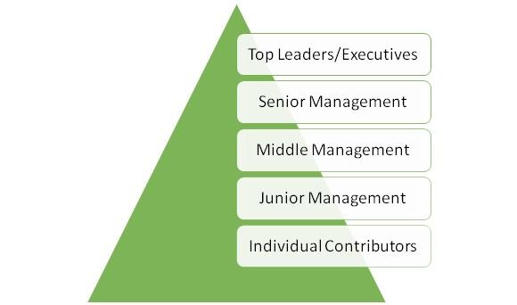 Executive Coaching Model Anant Sharma