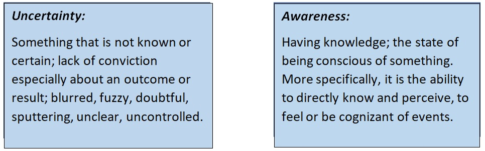 Robyn Lewis_Coaching_Tool Uncertainty vs. Awareness